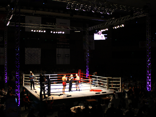 Ultimate Pro Fight 7